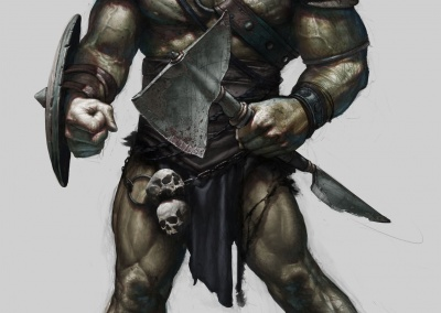 orc41